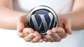 wordpress_hands